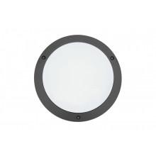 Dubhe S LED1x300 C421 T830